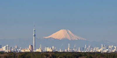 Adesivo Tokio vista della città con il cielo di Tokyo albero e montagna Fuji