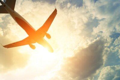 Adesivo Tonica foto di aereo commerciale al sole
