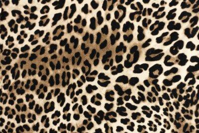 Adesivo Trama favolosa leopardo. Sfondo di moda tessile.