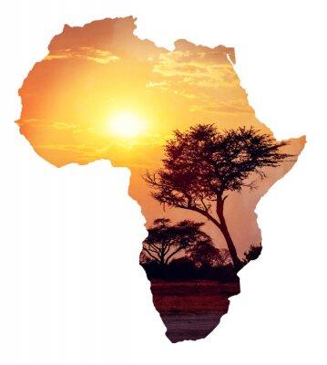 Adesivo tramonto africano con acacia, mappa dell'Africa concept