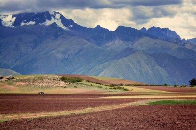 Adesivo Trattore in campo, Cuzco, Perù