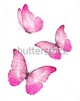 Adesivo Tre farfalle e acquerelli di colore, isolati su sfondo bianco