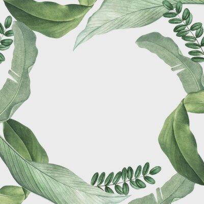 Adesivo Tropical leaves frame