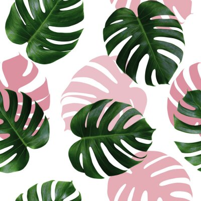 Adesivo Tropical leaves monstera,green leaf with pink shadow on white background.Monstera seamless pattern colorful illustration pink leaf,tree tropical exotic leaf for wallpaper textile vintage Hawaii style