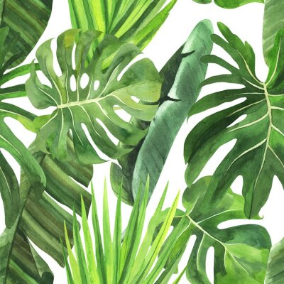 Adesivo  Tropical seamless pattern with tropical leaves, palm banana monstera on an isolated white background, watercolor jungle drawing, stock illustration.