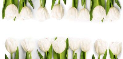 Adesivo Tulipani bianco con l'ombra