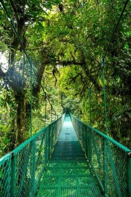 Adesivo un ponte nella foresta pluviale in Costa Rica