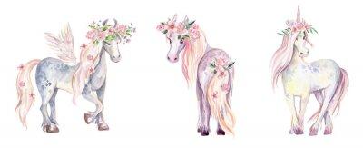 Adesivo Unicorno magico, Pegasus e Pony. Illustrazione ad acquerello, beauti