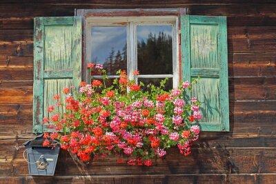 Adesivo vecchie finestre di legno con fioriera
