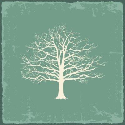 Adesivo Vecchio albero nudo su carta vintage. Illustrazione vettoriale