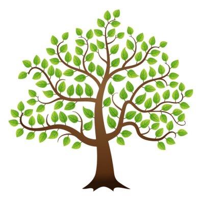 Adesivo Vector albero verde su sfondo bianco