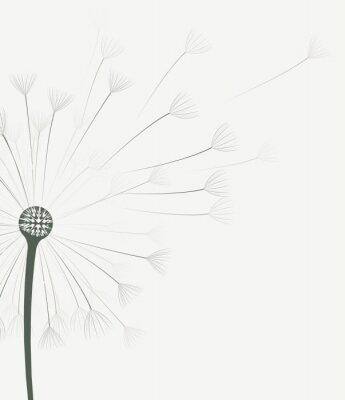 Adesivo Vector fiore di tarassaco