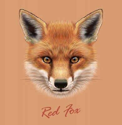 Adesivo Vector illustrativa Ritratto di una volpe rossa