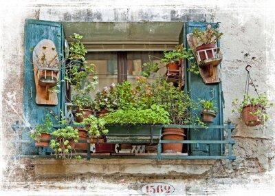 Adesivo Venezia, le vecchie piccole finestre con le piante