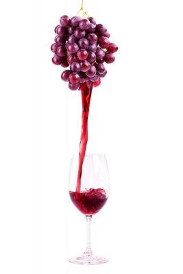 Adesivo Vino rosso da uve fresche