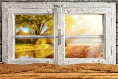 Adesivo Vintage legno finestra Overlook alberi di autunno