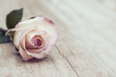 Adesivo Vintage Rose