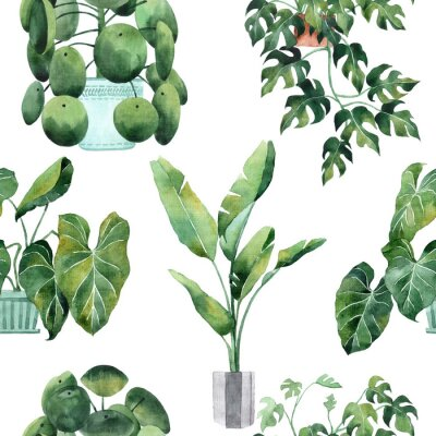 Adesivo Watercolor seamless pattern with tropical leaves and houseplants leaves. Greenery. Succulent. Floral Design element. Perfect for invitations, cards, prints, posters