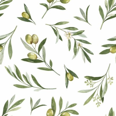 Adesivo Watercolor vector seamless pattern of olive branches and leaves.
