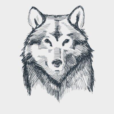 Adesivo Wolf head grunge disegnata a mano schizzo illustrazione vettoriale