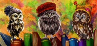 Adesivo Совы и книги
