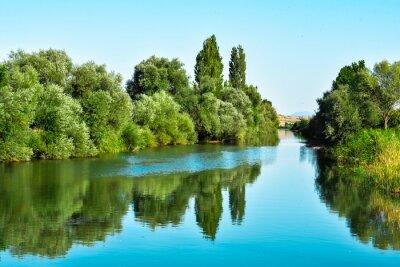 Adesivo nehir Sulari ve ağaçların yansıması