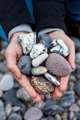 Adesivo Steine sammeln