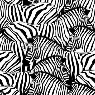 Adesivo Zebra seamless pattern.Savannah Animal ornament. Wild animal texture. Striped black and white. design trendy fabric texture, illustration.