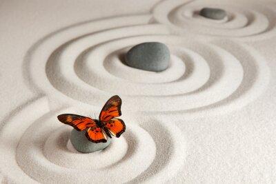 Adesivo Zen rocce con la farfalla