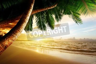 Carta da parati Alba sulla spiaggia caraibica