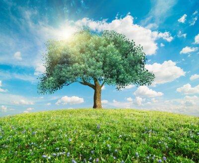 Carta da parati Albero verde paesaggio primaverile