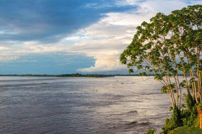Carta da parati Amazon Riverview