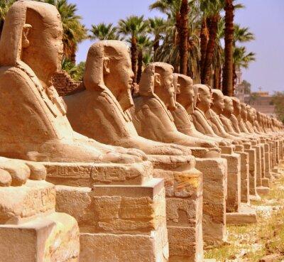 Carta da parati Amon Tempio di Luxor