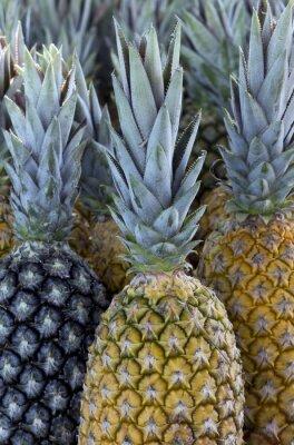 Carta da parati Ananas