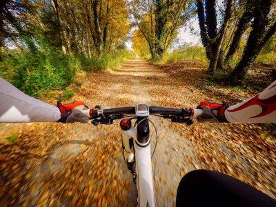 Carta da parati Andando in bicicletta in autunno in campagna. pov originalmpoin di vista