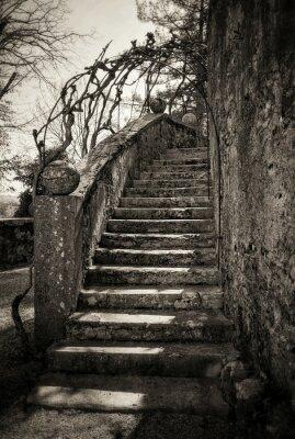 Carta da parati antiche scale