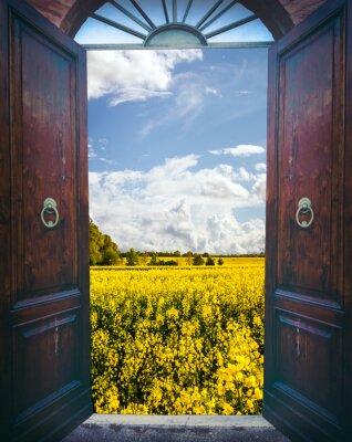 Carta da parati Aprire porte e paesaggio