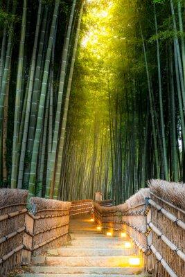 Carta da parati Arashiyama Bamboo Forest