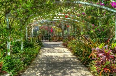 Carta da parati Arco coperto di fiori variopinti luminosi al giardino botanico a Napoli FL