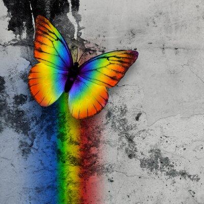 Carta da parati arcobaleno farfalla