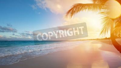 Carta da parati Art Bella alba sopra la spiaggia tropicale