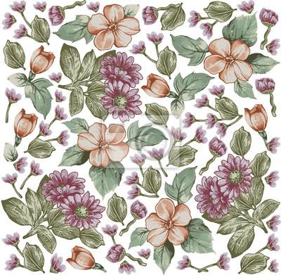 Aster Modello Classico Bellissimi Fiori Rosa Vintage Sfondo Carta