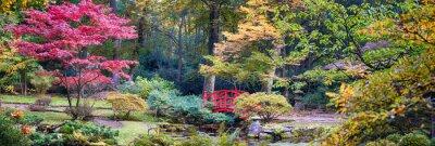 Carta da parati autunno nel parco giapponese, panorama