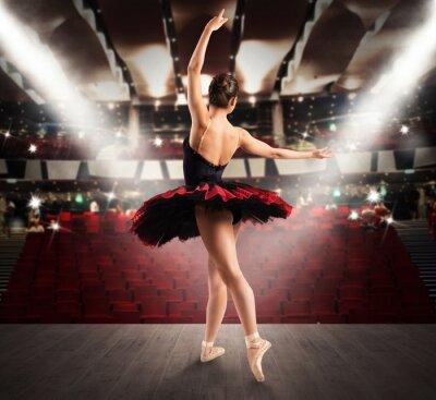 Carta da parati ballerina classica al teatro