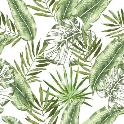 Carta da parati Banana verde, foglie di palma di monstera con fondo bianco. Vector seamless. Illustrazione di fogliame giungla tropicale. Piante esotiche verde Disegno floreale della spiaggia di estate. Natura paradi