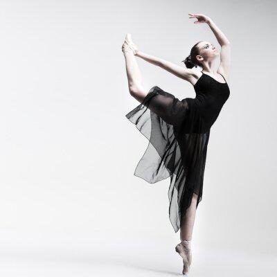 Carta da parati Beautiful ballet-dancer in posa su sfondo studio
