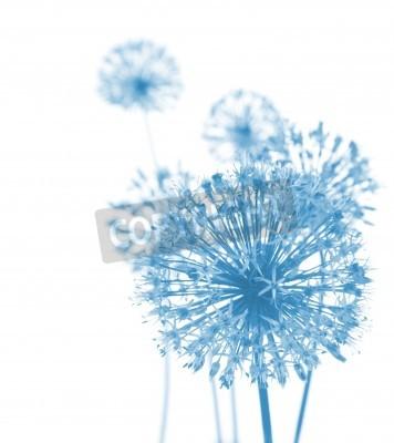 Carta da parati Beautiful Blue Flowers / abstract composition su sfondo bianco