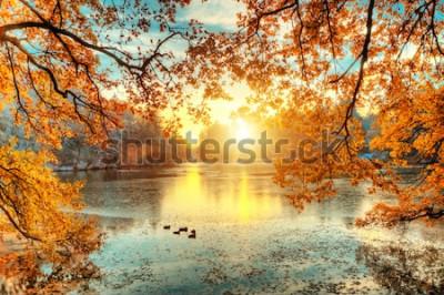Carta da parati Bei alberi colorati con il lago in autunno, fotografia di paesaggio. Tardo autunno e inizio periodo invernale. All'aperto e natura.