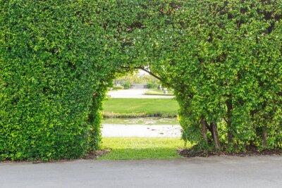 Carta da parati Bel giardino