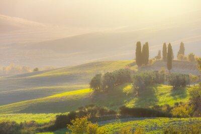Carta da parati Bella alba paesaggio con le colline pittoresche